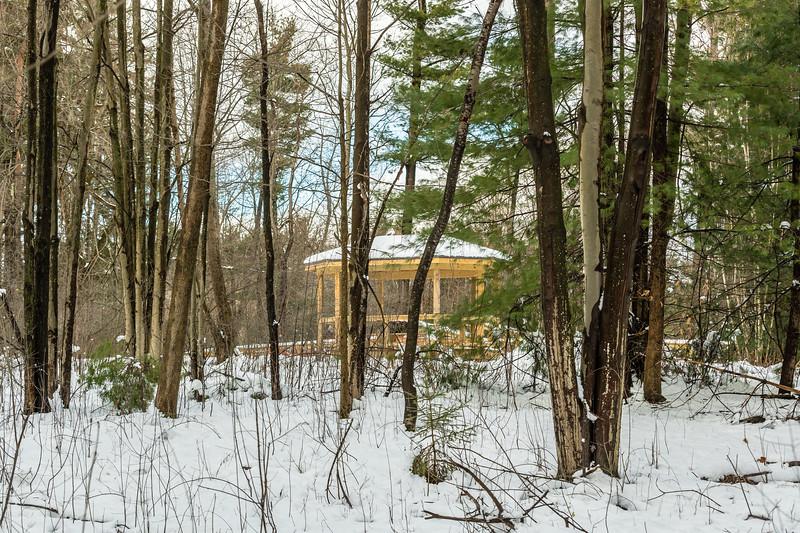 Asbury Woods 003 December 02, 2020