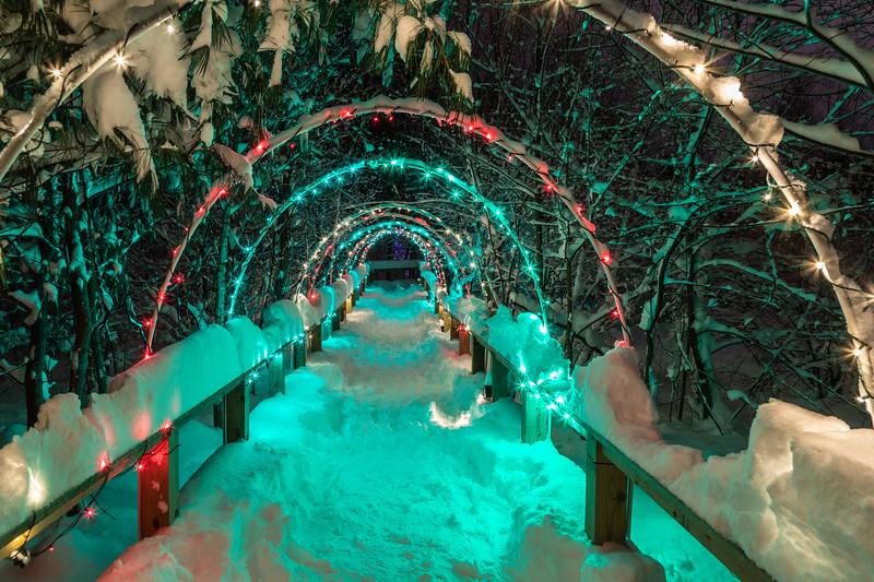 Asbury Woods 037 December 26, 2020
