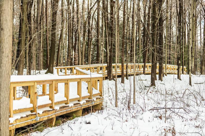 Asbury Woods 005 December 02, 2020