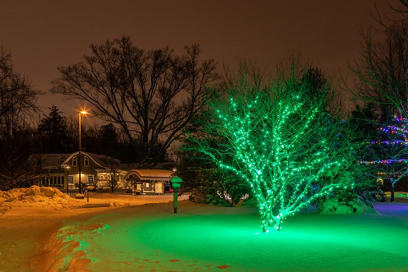 Asbury Woods 025 December 26, 2020