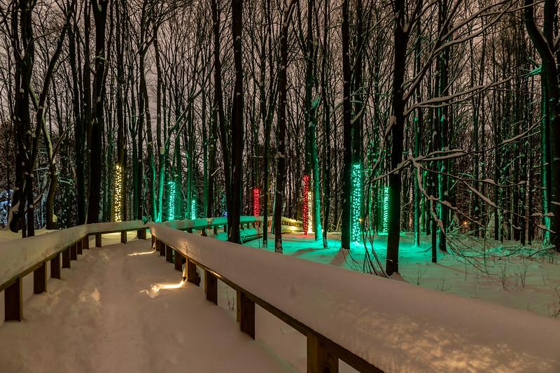 Asbury Woods 036 December 26, 2020