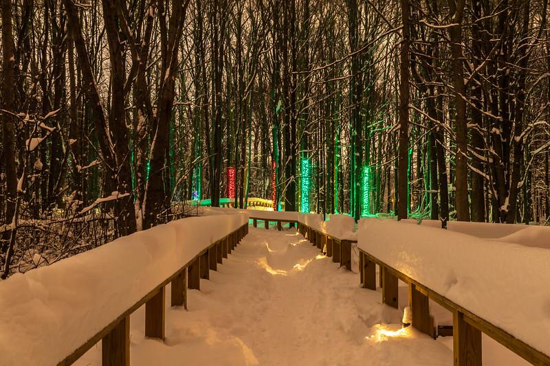 Asbury Woods 035 December 26, 2020