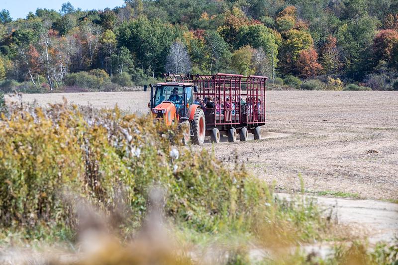 Port Farms 162 October 11, 2019