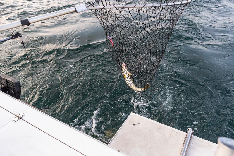 Visit Erie Fishing Charter September 21, 2019 043