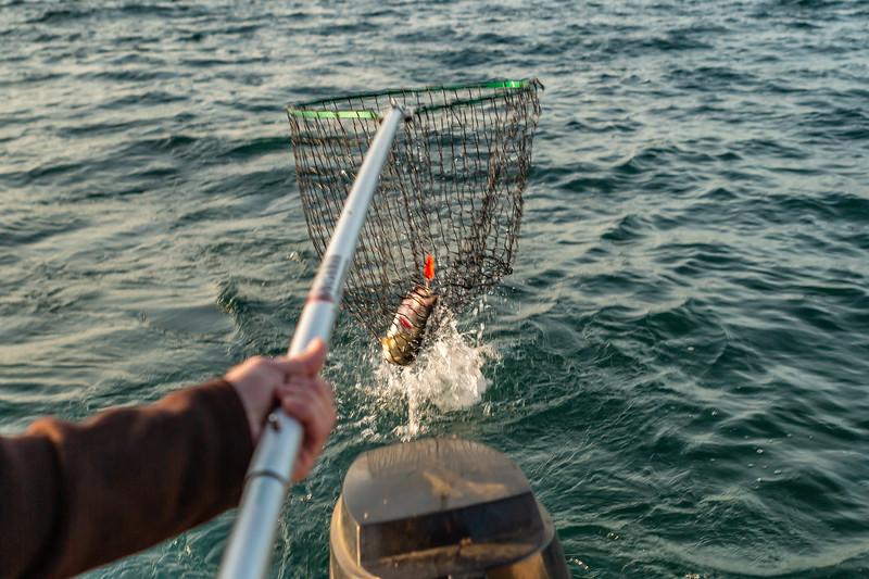 Fishing June 23, 2019 007