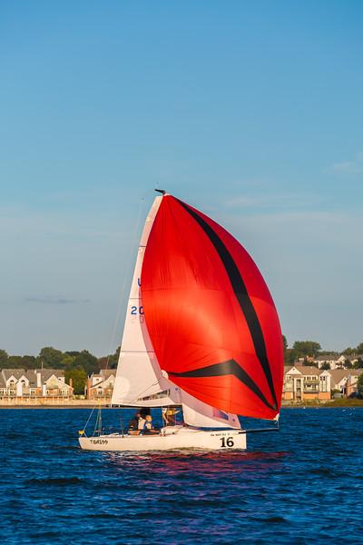 Sail Boat Race 113