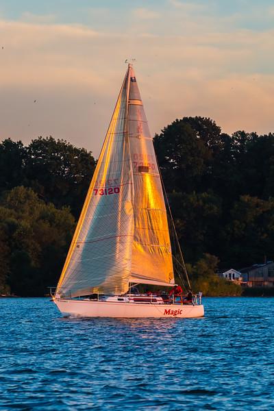 Sail Boat Race 243