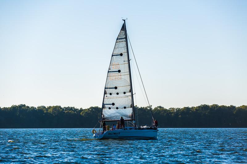 Sail Boat Race 054