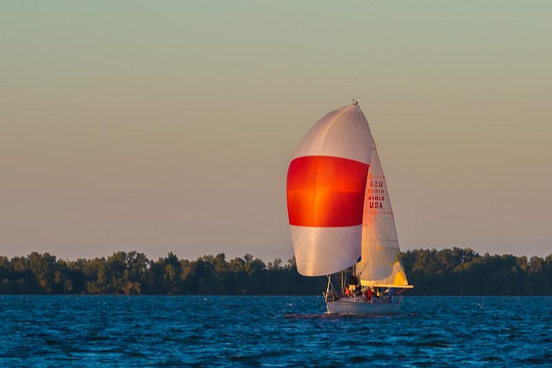 Sail Boat Race 231