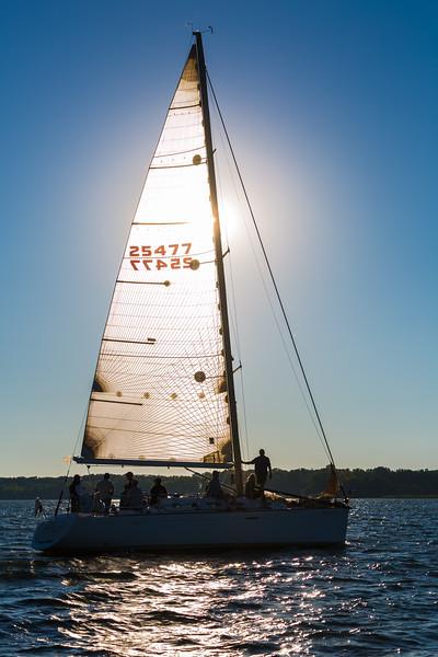 Sail Boat Race 088