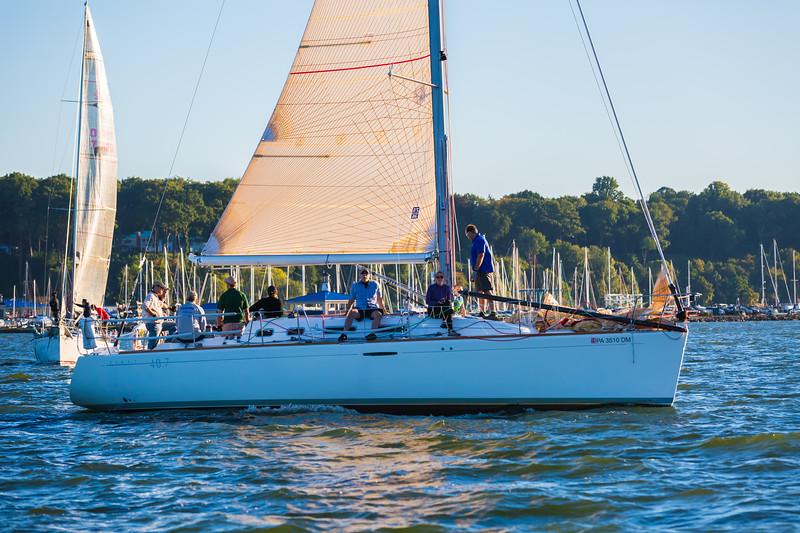 Sail Boat Race 078