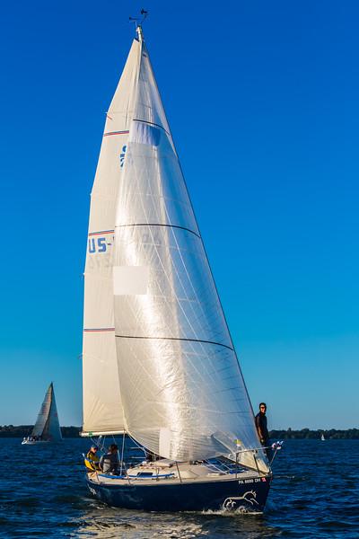 Sail Boat Race 138