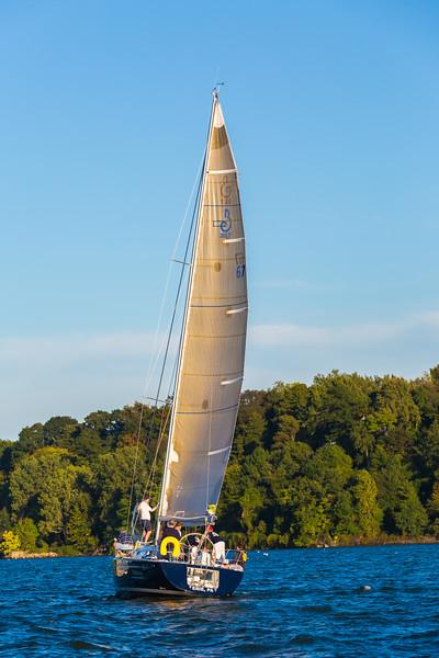 Sail Boat Race 099