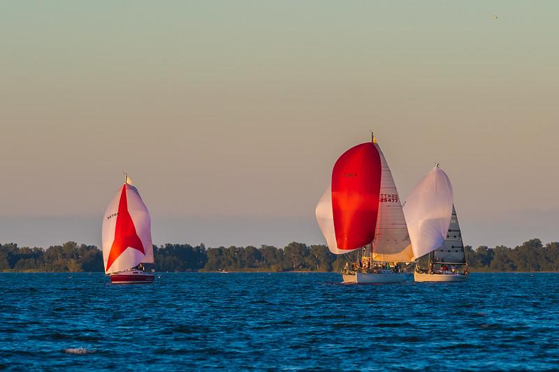 Sail Boat Race 234