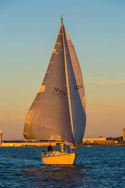 Sail Boat Race 238