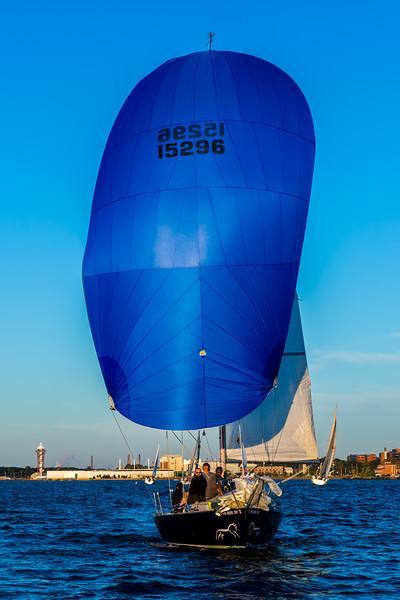 Sail Boat Race 203