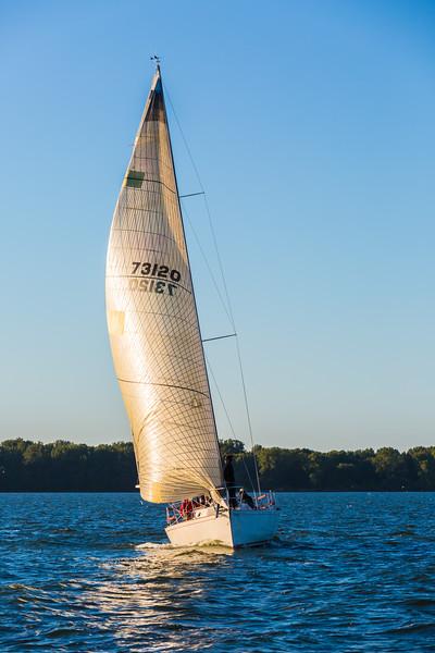 Sail Boat Race 119