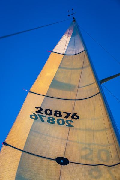 Sail Boat Race 117