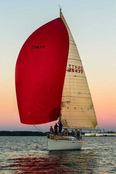 Sail Boat Race 270