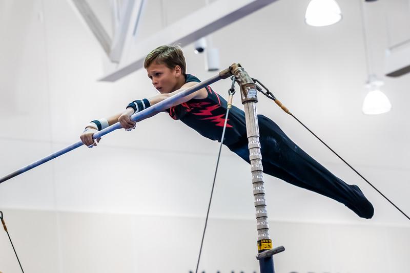 Stars & Stripes Gymnastics 018 January 18, 2020