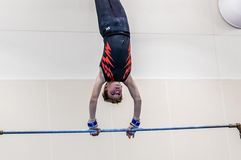 Stars & Stripes Gymnastics 016 January 18, 2020