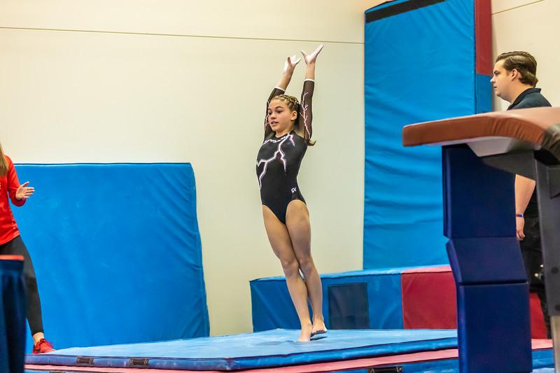Stars & Stripes Gymnastics 042 January 18, 2020