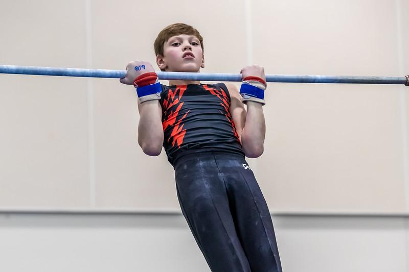 Stars & Stripes Gymnastics 013 January 18, 2020
