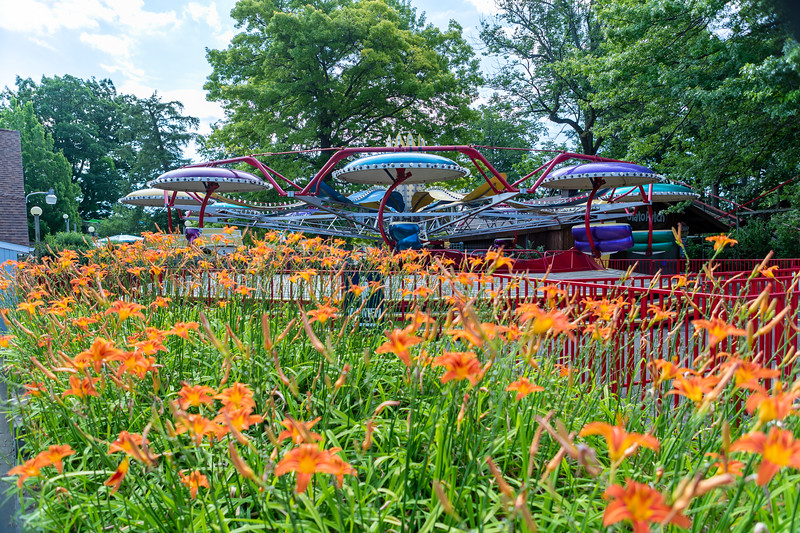 Waldameer Flowers July 23, 2019 001