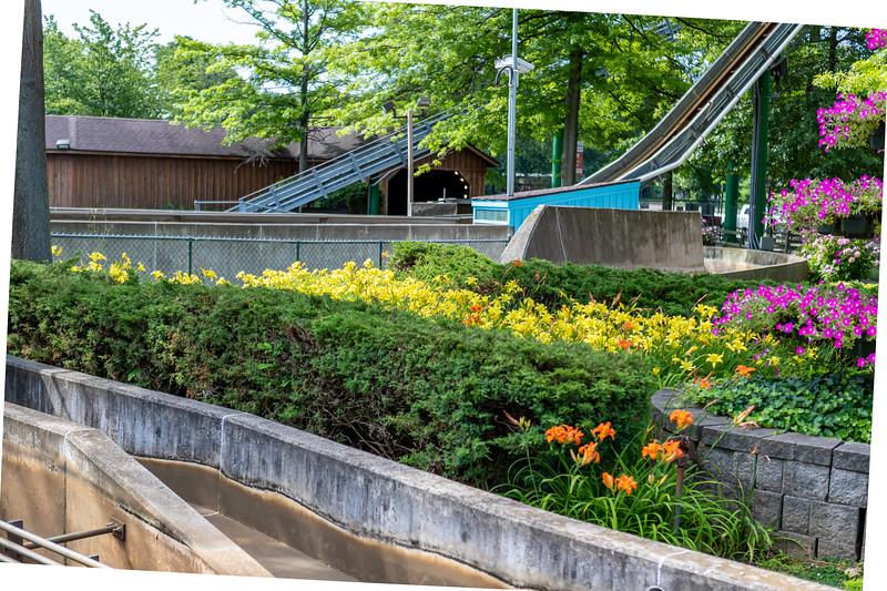Waldameer Flowers July 23, 2019 034