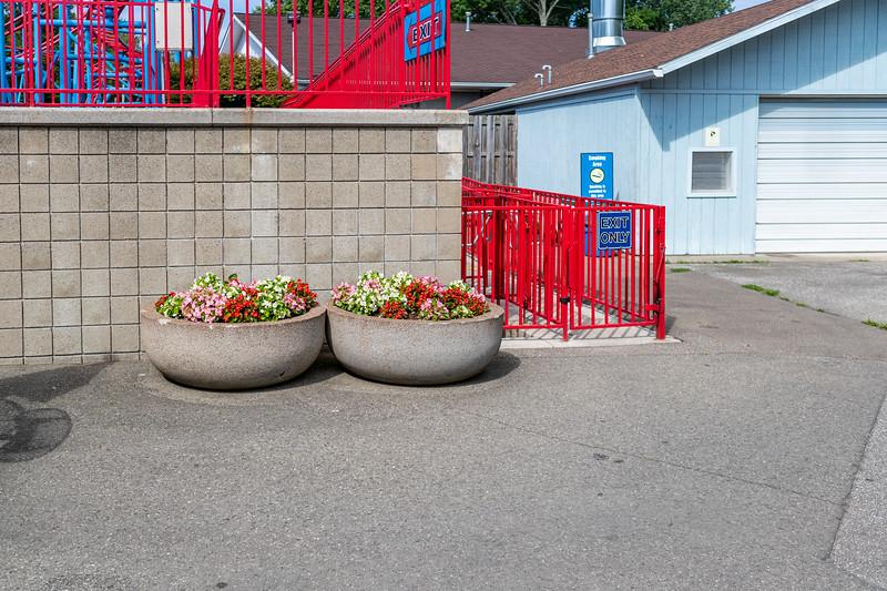 Waldameer Flowers July 23, 2019 035