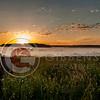 Segal Marsh Sunrise