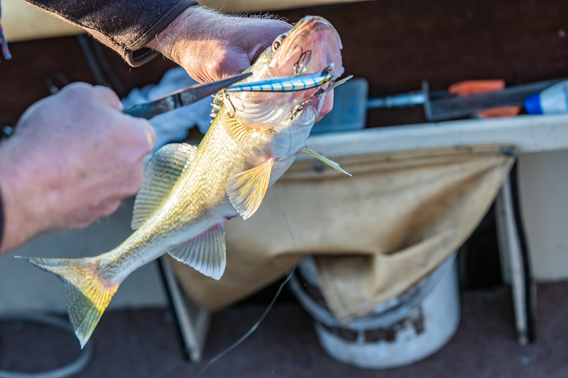 Fishing June 23, 2019 004