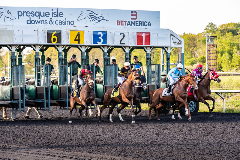 Presque Isle Downs  May 21, 2019 011
