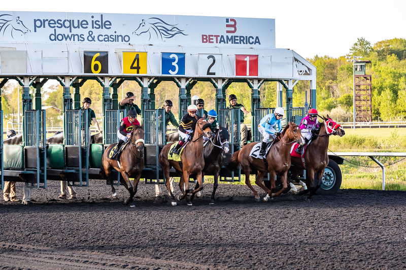 Presque Isle Downs  May 21, 2019 009