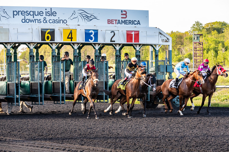 Presque Isle Downs  May 21, 2019 013