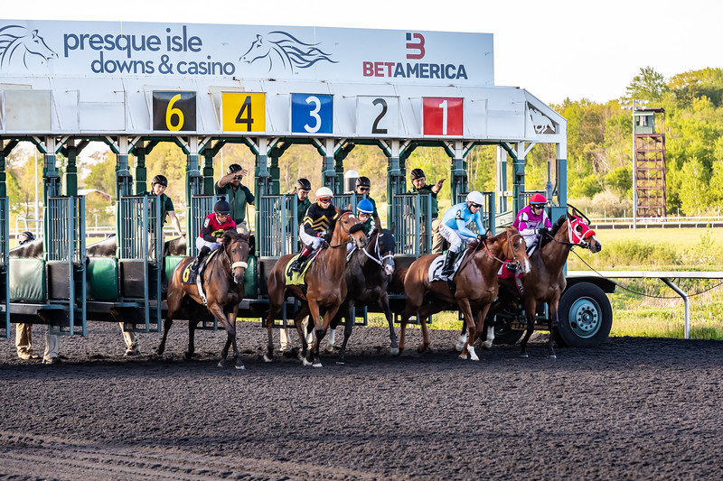 Presque Isle Downs  May 21, 2019 008