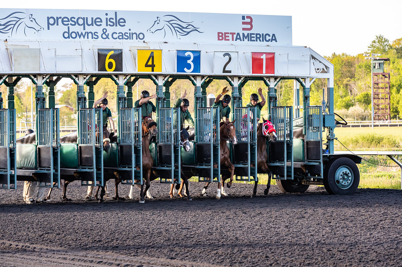 Presque Isle Downs  May 21, 2019 001