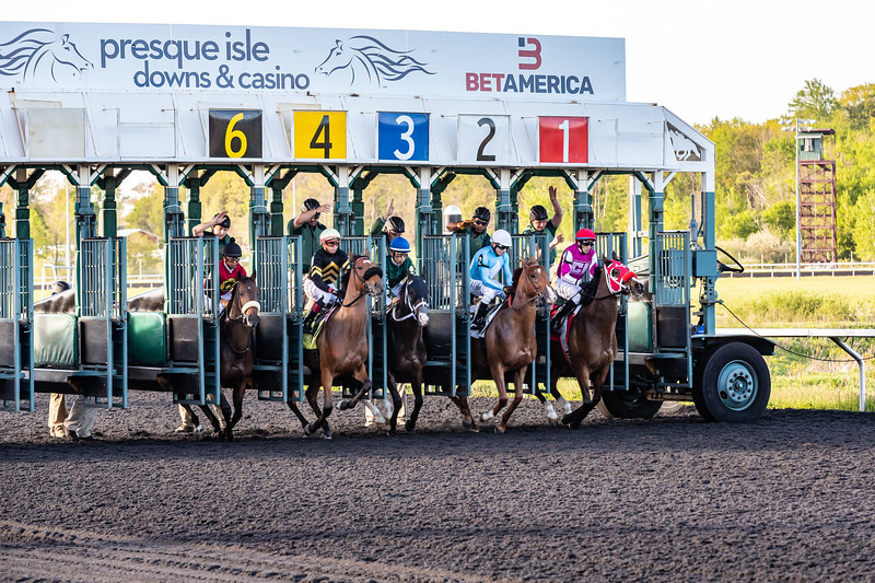 Presque Isle Downs  May 21, 2019 004