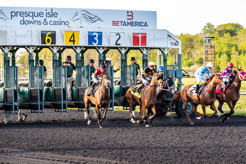 Presque Isle Downs  May 21, 2019 014