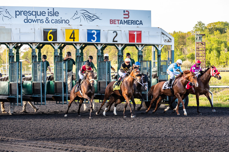 Presque Isle Downs  May 21, 2019 012