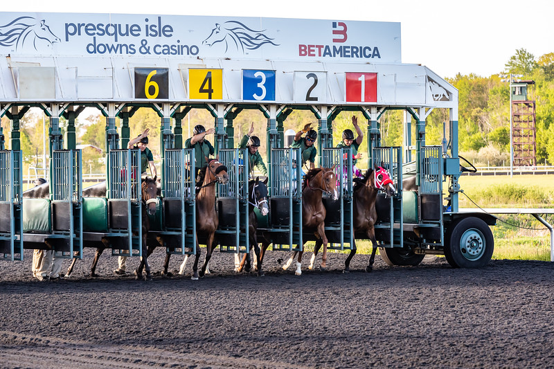 Presque Isle Downs  May 21, 2019 002