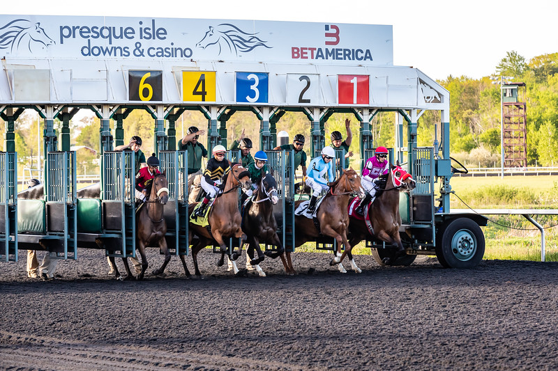 Presque Isle Downs  May 21, 2019 005
