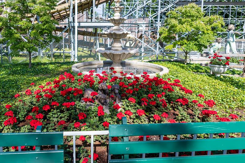 Waldameer Flowers July 23, 2019 015