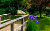 To Monet's Bridge