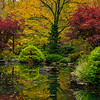 Tranquil fall pond