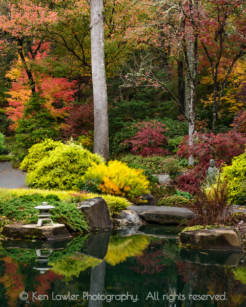 Autumn Japanese Garden Portrait