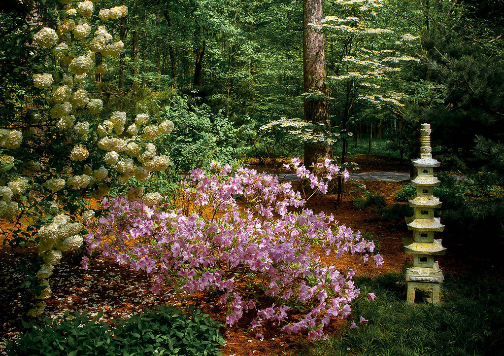 "<center><h2>' Japanese Color Display  '</h2>  Gibb's Garden Ballground, GA  © 2013 R.Gallet  Matted 16""x20"", on Luster Photo paper (12 mil)    </center>"