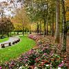 Fall garden walkway