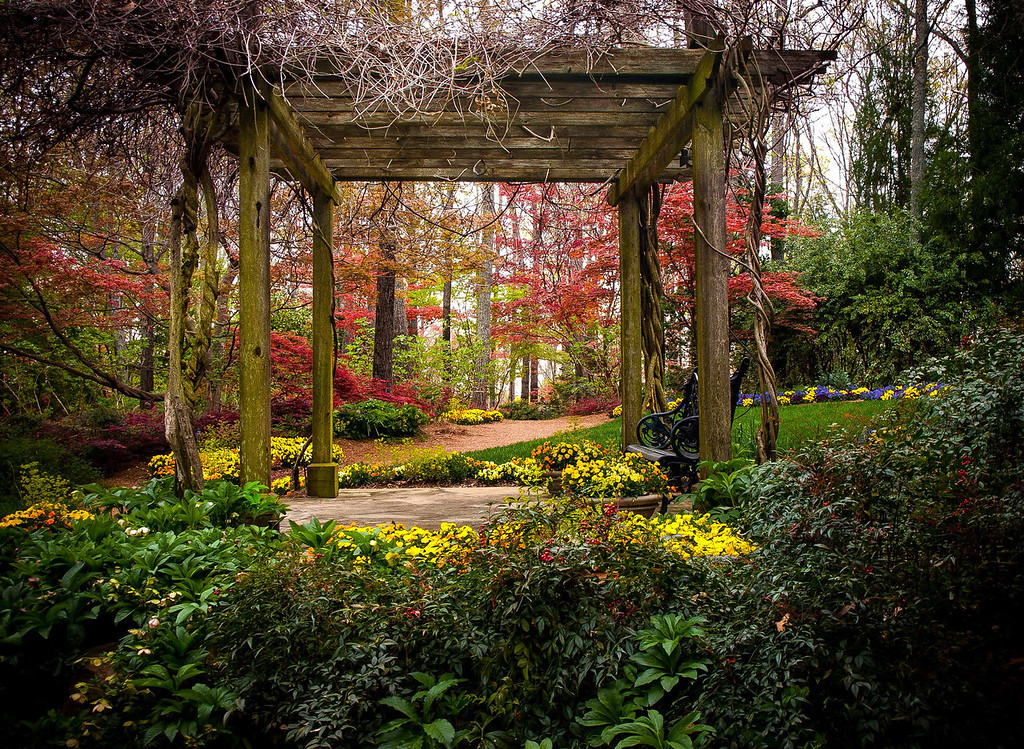 "<center><h2>' Spring Begins in Georgia '</h2>  Gibb's Garden Ballground, GA  Matted 16""x20"", on Luster Photo paper (12 mil)    </center>"