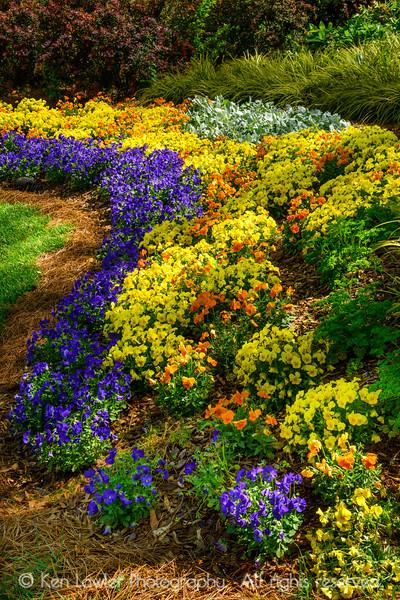 Curve of garden color